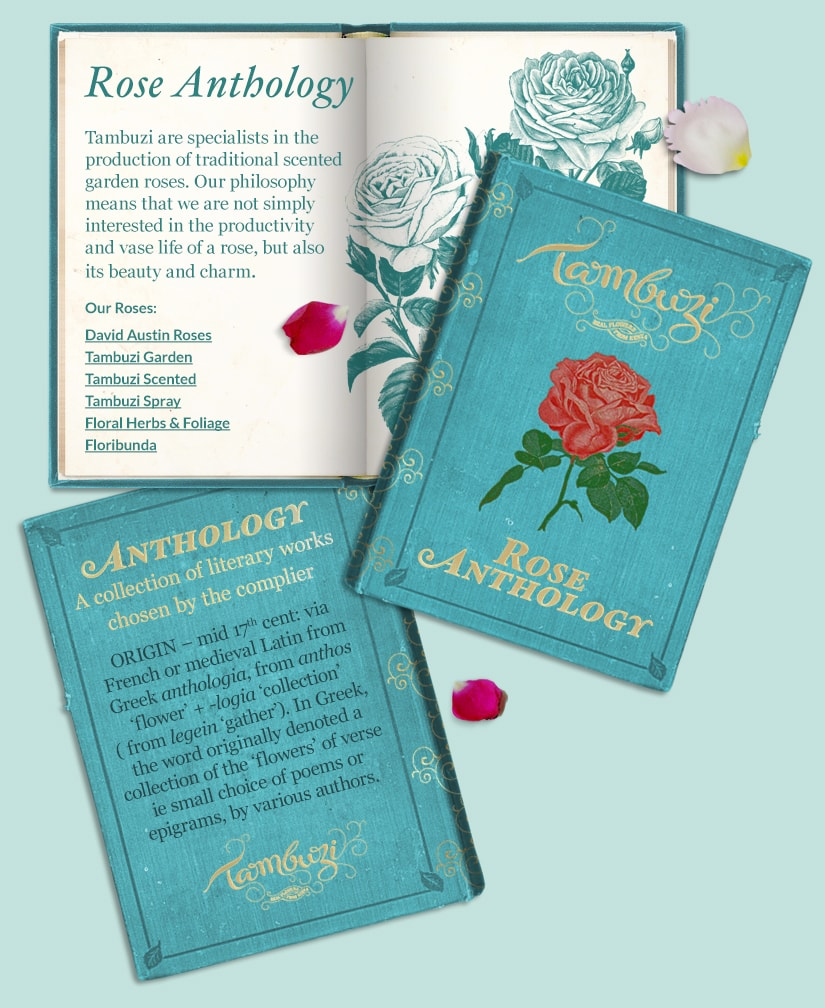 Rose Anthology Book
